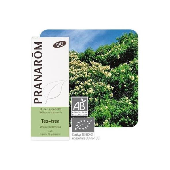 Huile essentielle de Tea Tree bio - 10ml