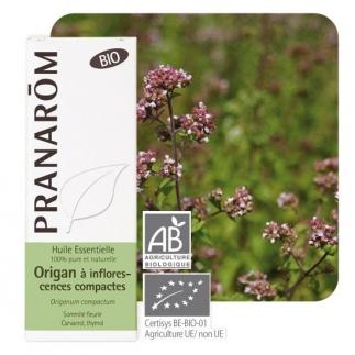 Huile essentielle d'Origan à Inflorescences Compactes Bio - 10 ml