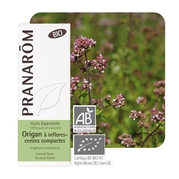 Huile essentielle origan inflorescences compactes bio - Pranarôm