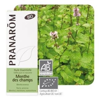 Huile essentielle de Menthe des Champs bio - 10 ml