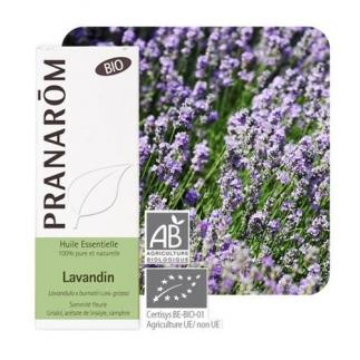 Huile essentielle de Lavandin grosso bio - 10 ml