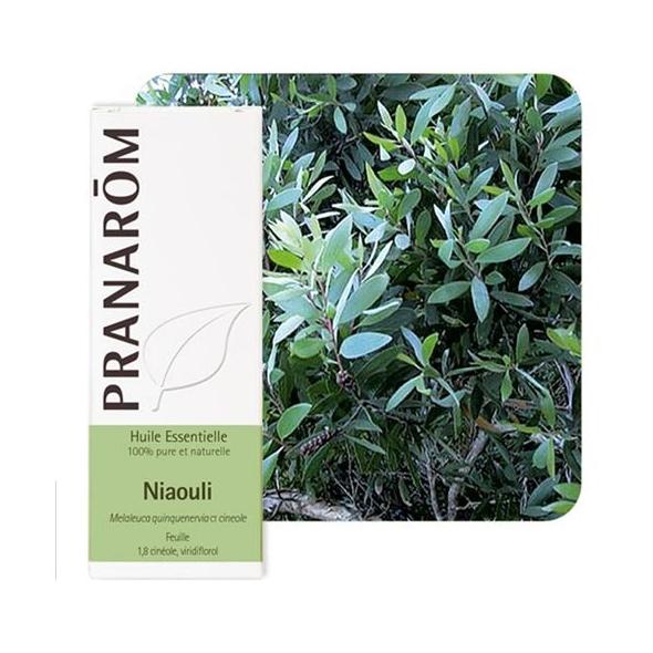 Huile essentielle de Niaouli - 10 ml