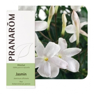 Huile essentielle de Jasmin Absolue Pranarôm