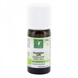 Huile essentielle Eucalyptus radié bio - 10 ml