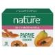 Papaye fermentée - Antioxydant - 30 sachets