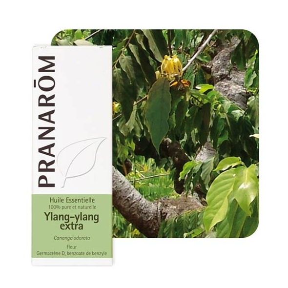 Huile essentielle Ylang Ylang extra Pranarôm