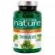Tribulus - Tonus sexuel - 250 Gélules