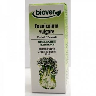 Foeniculum vulgare bio (fenouil) - 50 ml