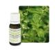 Huile essentielle de Basilic exotique - 10 ml