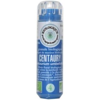 Centaury (Centaurée) n° 4 - soumission, docilité, faiblesse