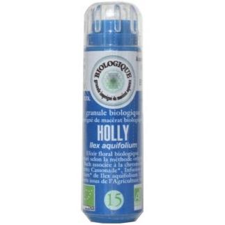 Holly (Houx) n°15 - jalousie, colère, rancune, esprit négatif