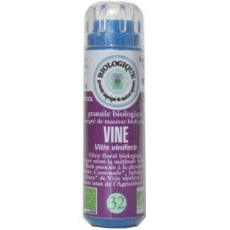Vine (Vigne) n°32 - autoritaire, dominateur, manque de respect