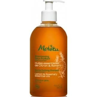 Shampooing Soin Purifiant - Cheveux gras - 500 ml