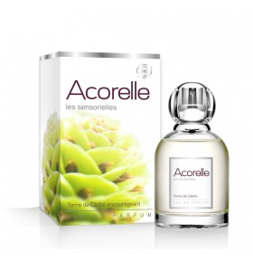 Eau de parfum Terre de Cèdre - Encourageante - 50 ml