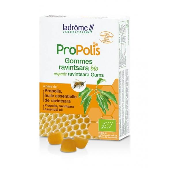 Gommes Propolis au Ravintsara bio