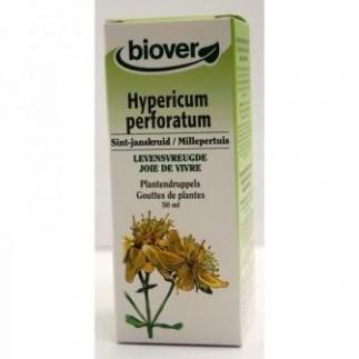 Hypericum perforatum (millepertuis) - 50 ml