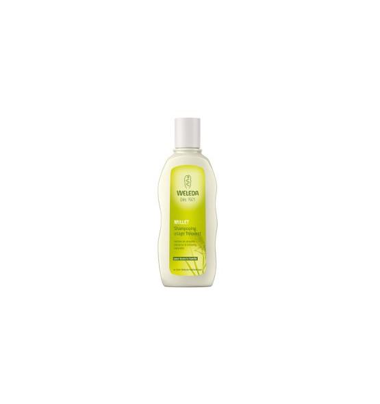 Shampooing usage fréquent au millet - 190 ml