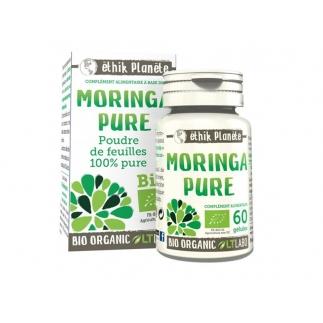 Moringa pure – source d'énergie – 60 gélules