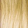 8.0 Blond clair