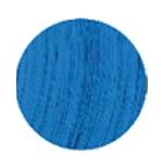 Bold Bleu