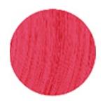 Bold Fushia