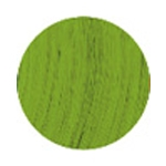 Bold Vert